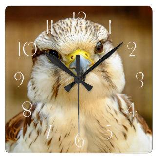 Reloj Cuadrado Retrato del animal de Gyrfalcon