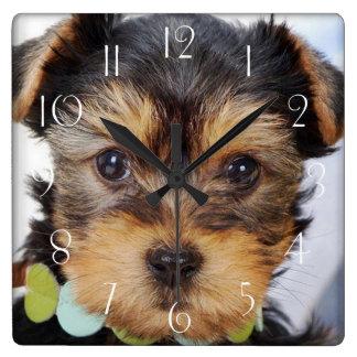 Reloj Cuadrado Yorkshire Terrier adorable