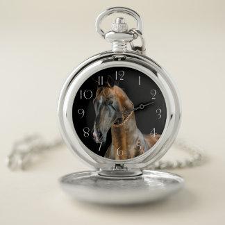 Reloj De Bolsillo Caballo de Akhal-Teke
