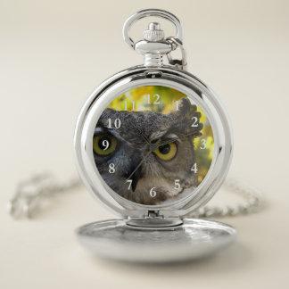 Reloj de bolsillo de la cara del búho