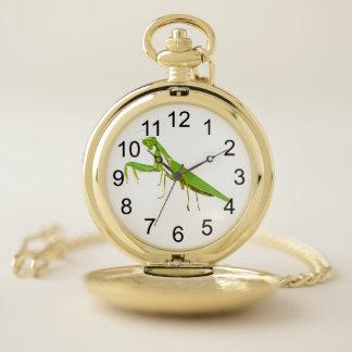 Reloj de bolsillo del oro de la mantis religiosa