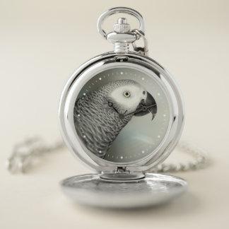 Reloj De Bolsillo Loro majestuoso del gris africano
