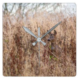 reloj de la fotografía de los ciervos