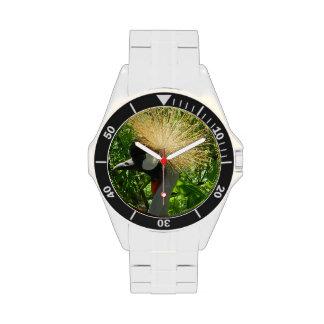 Reloj de la grúa de Sarus del indio