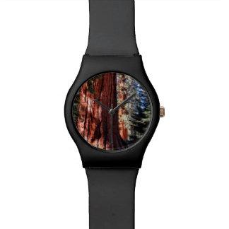 Reloj de la secoya gigante