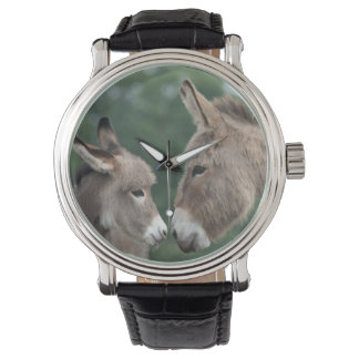 Reloj de los burros
