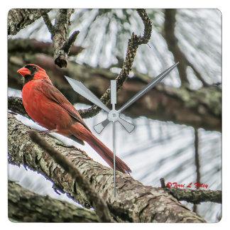 Reloj de pared cardinal