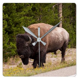 Reloj de pared del búfalo o del bisonte