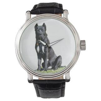 Reloj de Presa Canario