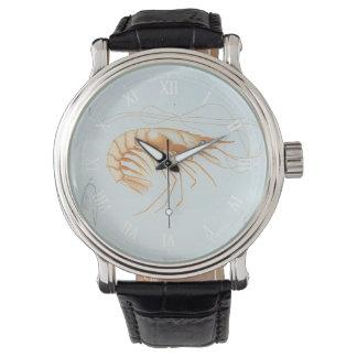 Reloj De Pulsera Anatomía del camarón del vintage, animales del