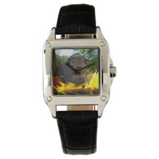 Reloj De Pulsera Conejillo de Indias lindo en naturaleza