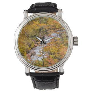 Reloj De Pulsera Escena coloreada del paisaje del bosque, Patagonia