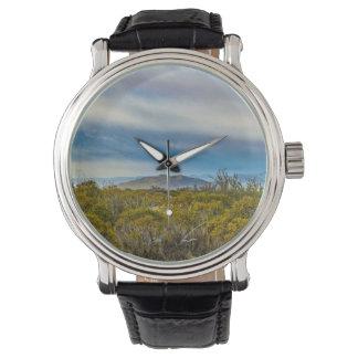 Reloj De Pulsera Escena patagona del paisaje, Santa Cruz, la