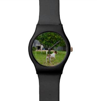 Reloj De Pulsera Fox terrier que juega en el jardín,
