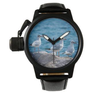 Reloj De Pulsera Gaviotas de cabeza negra, ridibundus del