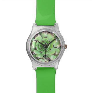 Reloj De Pulsera Modelo suculento de la textura de la planta