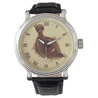 Reloj De Pulsera Platijas del vintage, pescados planos de la vida