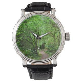 Reloj De Pulsera Rastro en bosque de la secoya