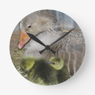 Reloj del Birds of a Feather