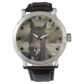 Reloj del caballo de Brown Reloj De Pulsera