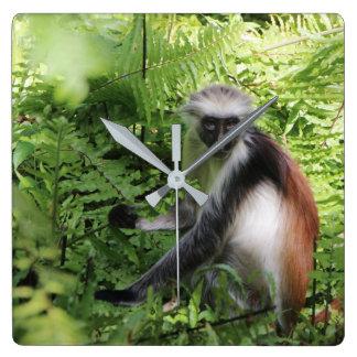 Reloj del mono