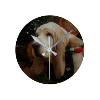 Reloj del perro de afloramiento