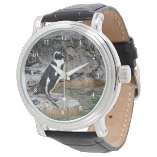 Reloj del pingüino 605