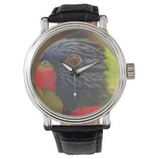 Reloj exótico del pájaro