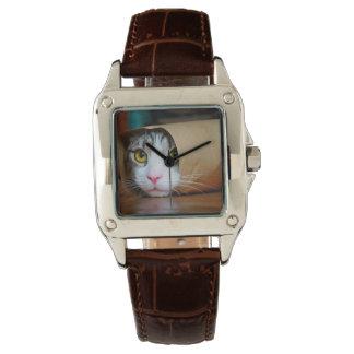 Reloj Gato de papel - gatos divertidos - meme del gato -