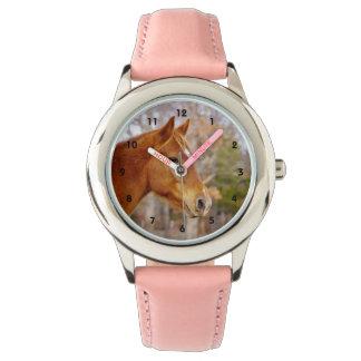 Reloj hermoso del caballo de la castaña
