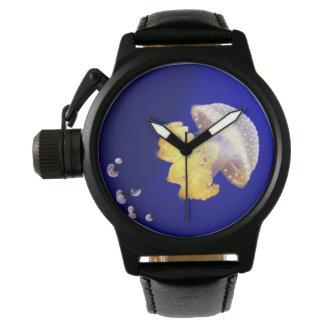 Reloj manchado australiano de las medusas