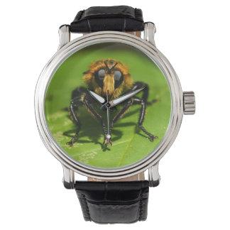 Reloj Mosca de ladrón