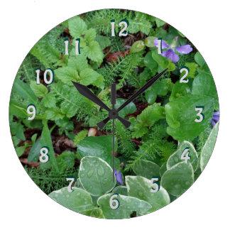 Reloj natural de los helechos del jardín de Forest