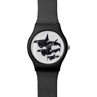 Reloj orca