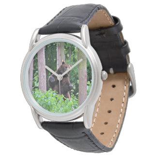 Reloj Oso grizzly que se coloca alto en las maderas