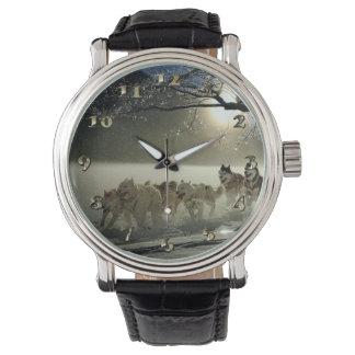 Reloj Raza fornida de Alaska del trineo del perro