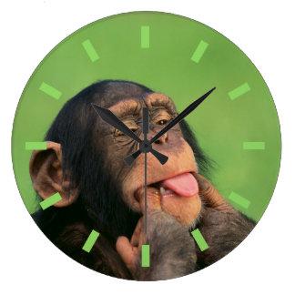 Reloj Redondo Grande Chimpancé fresco