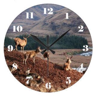 Reloj Redondo Grande Ciervo común en la cañada Etive, montañas de