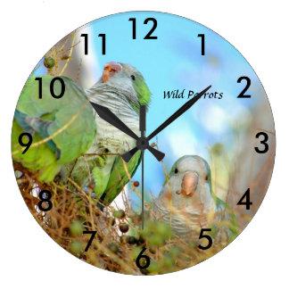 Reloj Redondo Grande El Quaker verde salvaje repite mecánicamente el