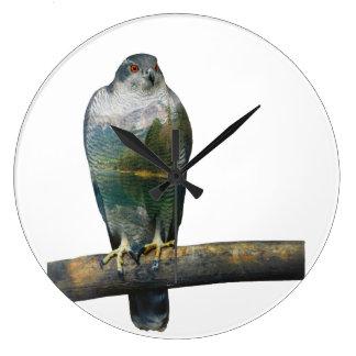 Reloj Redondo Grande Exposición doble del halcón