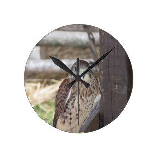 Reloj Redondo Mediano Cernícalo encaramado en un poste de la cerca