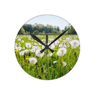 Reloj Redondo Mediano Dientes de león marchitos en prado holandés verde