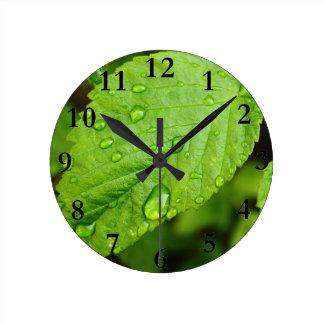 Reloj Redondo Mediano El verde se va con los gotas GR de COM de los