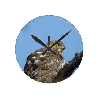 Reloj Redondo Mediano halcón