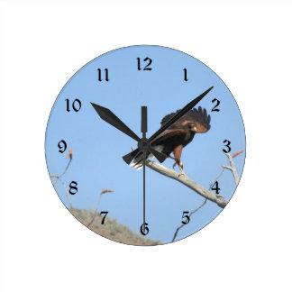 Reloj Redondo Mediano Harris Hawk