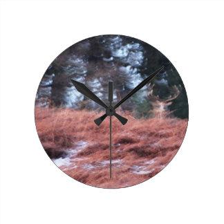 Reloj Redondo Mediano Macho en una colina
