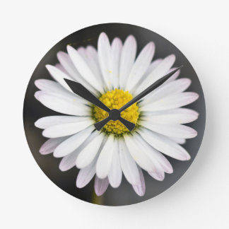 Reloj Redondo Mediano Margarita salvaje blanca y amarilla