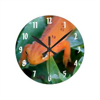 Reloj Redondo Mediano Naturaleza anaranjada roja del Salamander de Eft