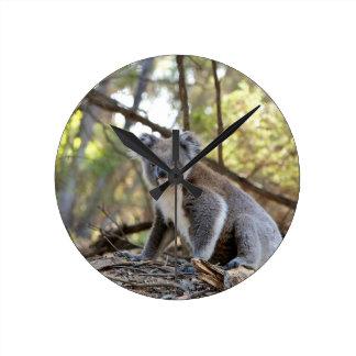 Reloj Redondo Mediano Oso de koala gris y blanco