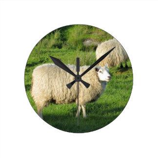 Reloj Redondo Mediano Ovejas irlandesas